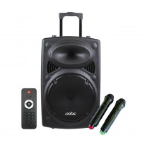 Wireless Trolley Bluetooth Speaker with USB /FM/TF card Reader/AUX In/Mic In : Artis BT912