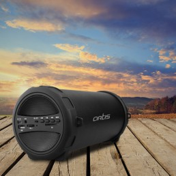 Outdoor Bluetooth Speaker With USB / FM / SD Card Reader / Aux In : Artis BT222