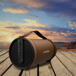 Outdoor Bluetooth Speaker With FM / TF Card Reader / Aux In : Artis BT306 (Brown)