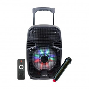 Wireless Trolley Bluetooth Speaker with USB /FM/TF card Reader/AUX In/Mic In : Artis BT908